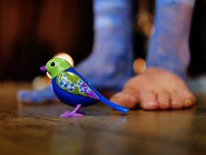 17/10/2020 - 17 octobre- SPECTACLE - Attention, chut d'oiseau !