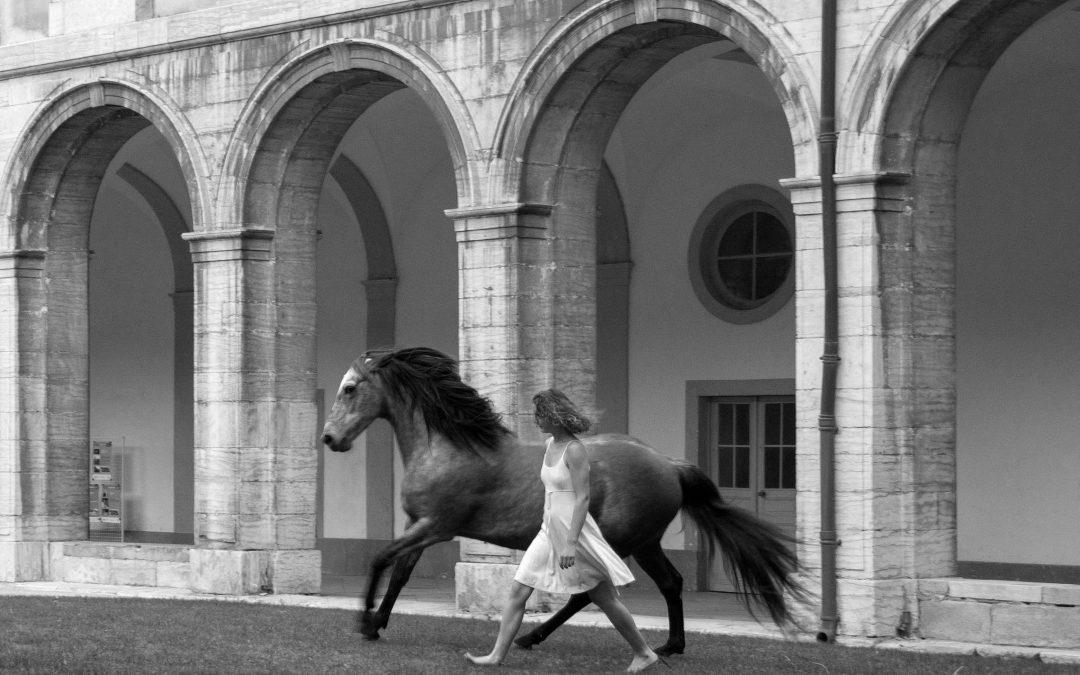 Spectacle Aurora Les chevaux célestes©Elisabeth Lindt Robin2