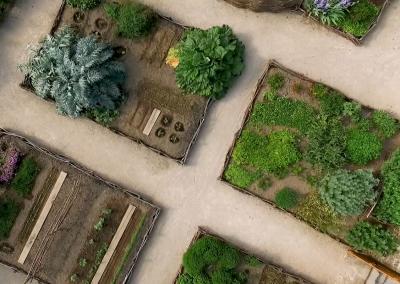 Visite guidée approfondie du jardin – A partir de juin 2021